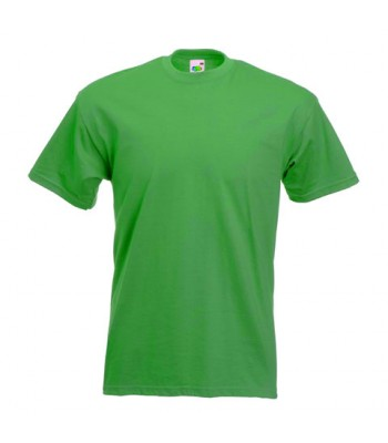 Skirlaugh T-Shirt House colour Green