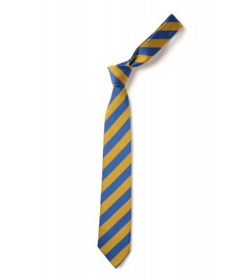 Newland St Johns year 6 tie