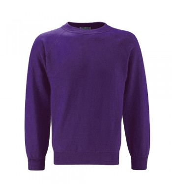Hedon Sweatshirt with your school logo
