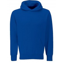Skirlaugh Hoodie (Plain House Colour: Blue)