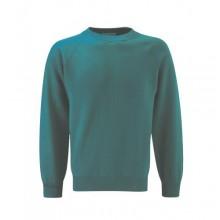 Brough Jade Sweatshirt with your school logo(Yellow text)