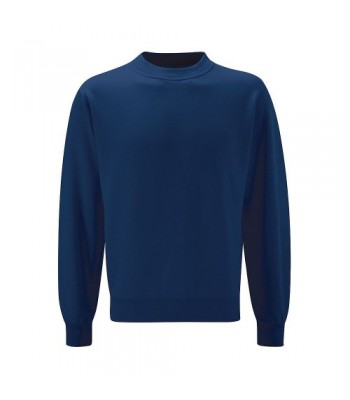 Ganton School Sweatshirt (with your school logo)