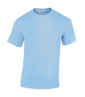 Swanland Shirt with logo - light blue