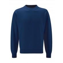 Thoresby Sweatshirt (with your school logo)
