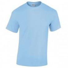 Westcott Primary PE T Shirt with your embroidered school logo