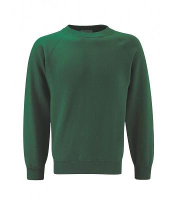 The Greenway Academy Sweatshirt (with your school logo)