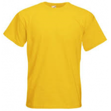Hutton Cranswick T-Shirt (with your school logo)